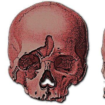 Vintage Skulls by crisismode