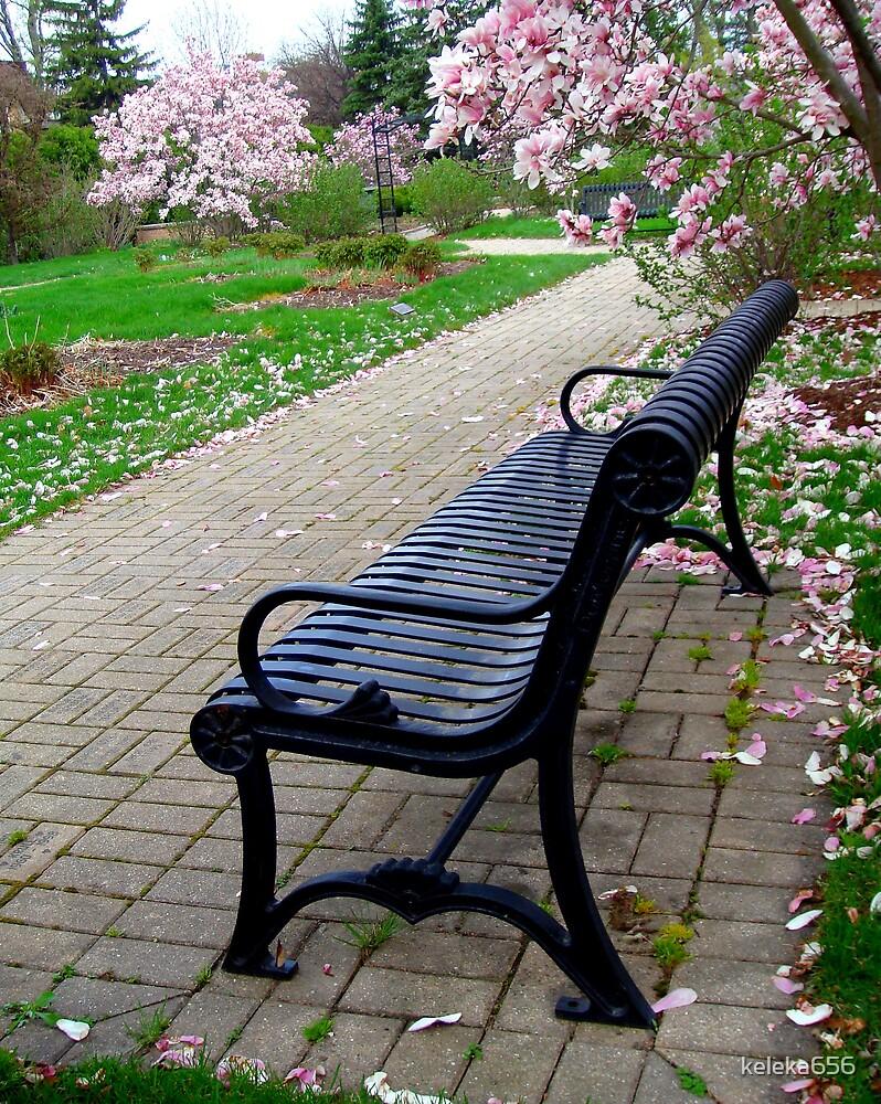 Sitting Pretty by keleka656