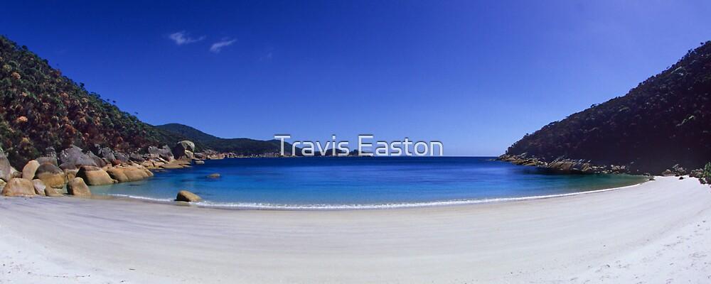Larkin Cove Panorama by Travis Easton