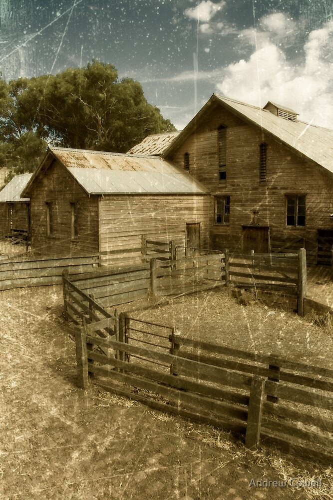 warrock woolshed by Andrew Cowell