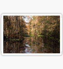 Beauty in the Swamp Sticker