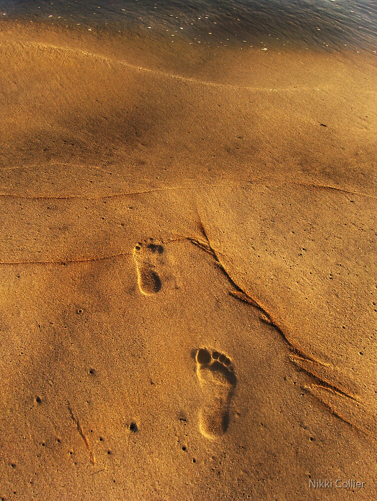 Footprints by Nikki Collier