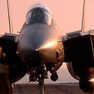 Ein F-14 Tomcat wird zum dampfbetriebenen Katapult an Bord der USS Theodore Roosevelt geleitet. von StocktrekImages