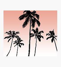 Sonnenuntergang Palmen Fotodruck