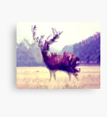 Out Of The Wild Canvas Print