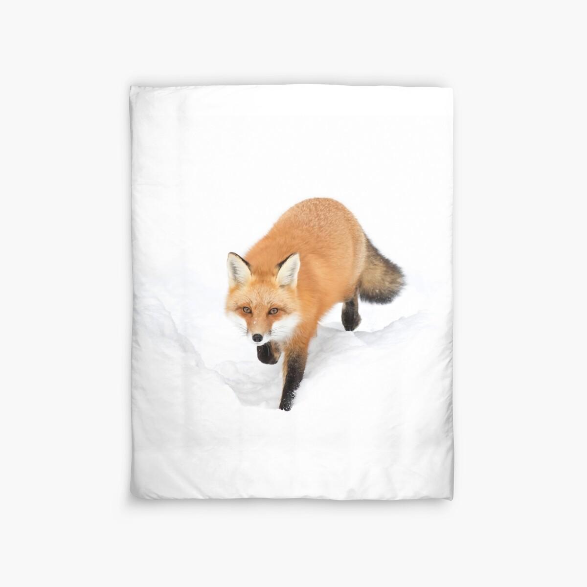 Quot Red Fox Algonquin Park Quot Duvet Covers By Jim Cumming