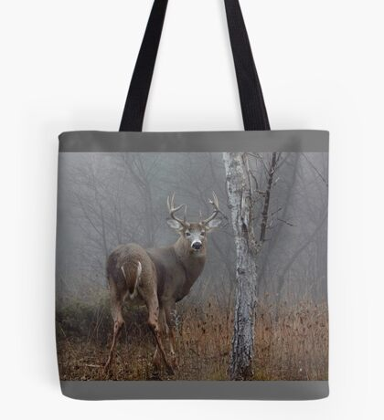 Buck - White-tailed deer Tote Bag