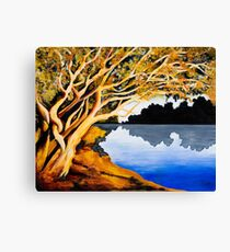 Burnt Umber on Coongie Lakes Canvas Print