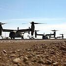 V-22 Osprey Tiltrotor Flugzeuge kommen in Camp Bastion, Afghanistan. von StocktrekImages