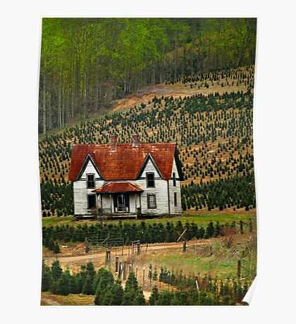 spring at the christmas tree farm Poster