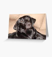 Brady the Black Labrador Greeting Card