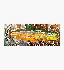 Pumpkin Seed - Trout Painting Photographic Print