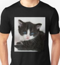 An Adorable Cute Kitten With Blue Eyes T-Shirt