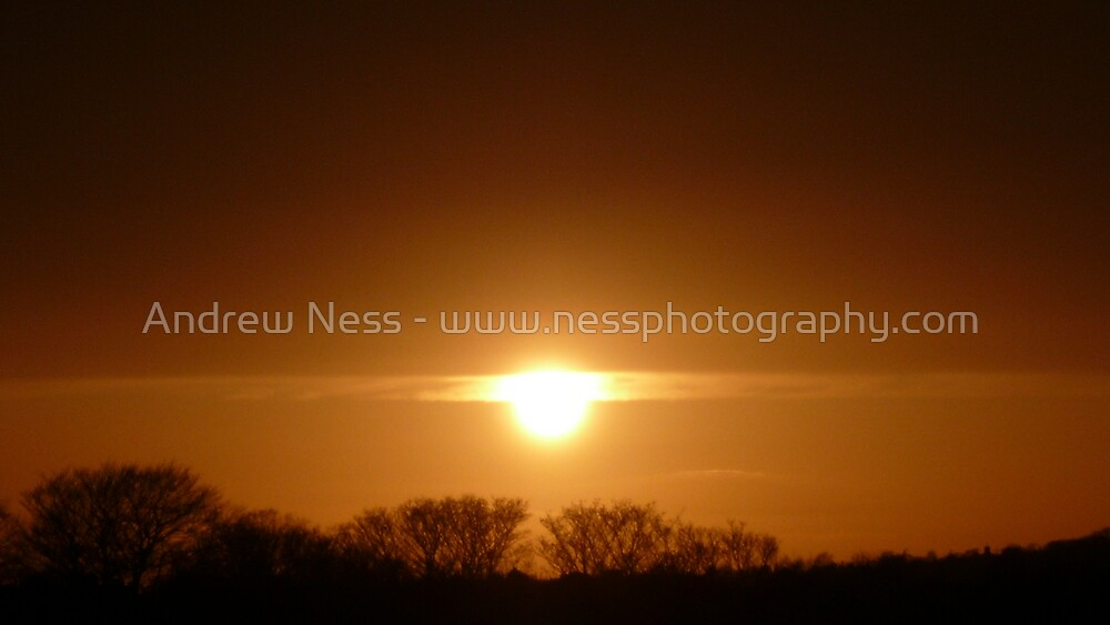 A Ray of Sunshine by Andrew Ness - www.nessphotography.com