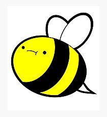 Big Dumb Bee Photographic Print
