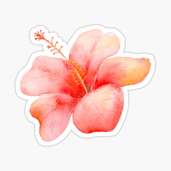 Tropical Hibiscus Floral with Leaves Watercolor Sticker
