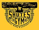 Shute's Gym by popnerd