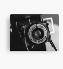 King Penguin Folding Camera Canvas Print
