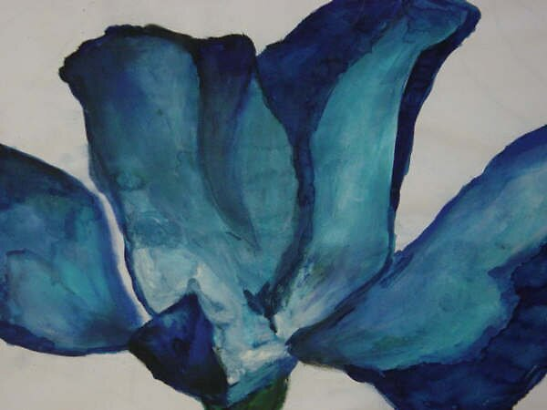 Blue flower,  by Ammaarah