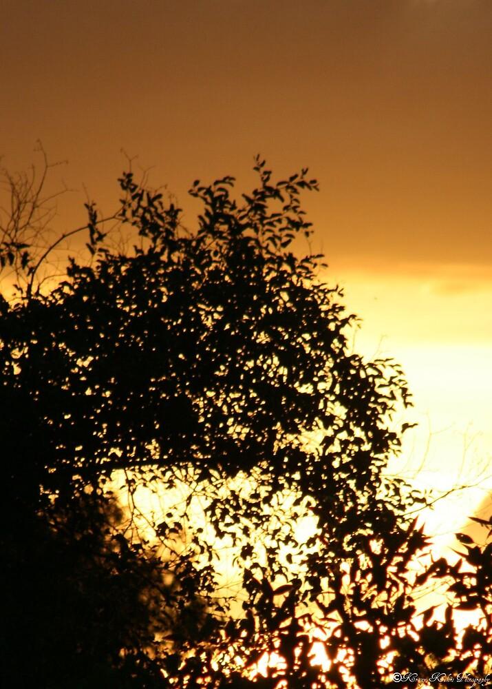 sunset home by Jayde Allen