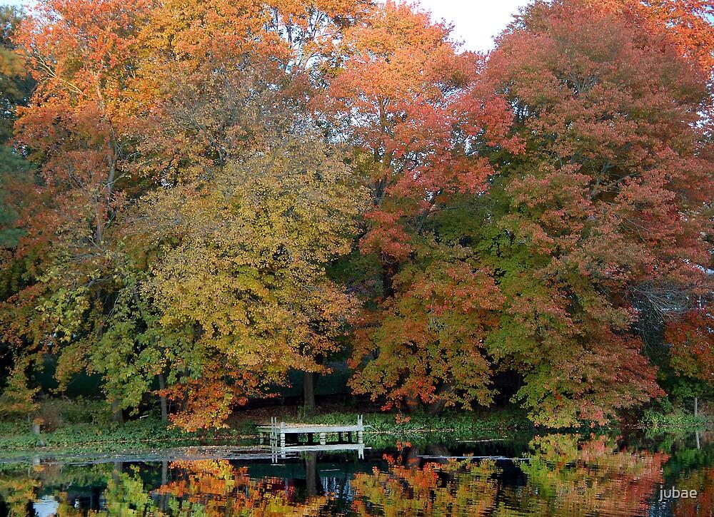 Fall by jubae