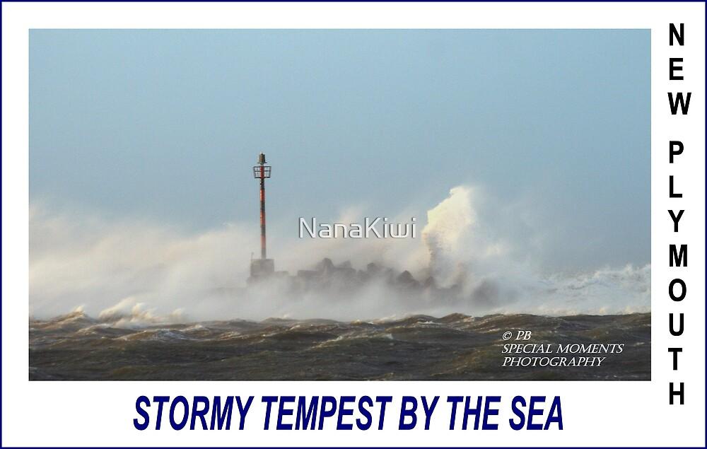 Stormy Tempest by NanaKiwi