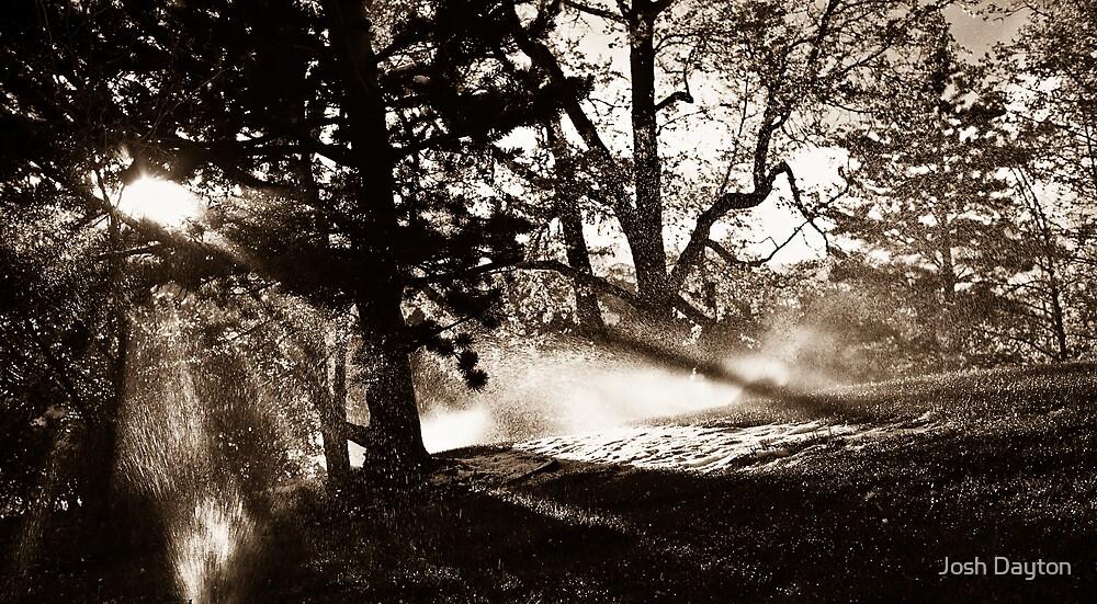 Springtime Mist by Josh Dayton