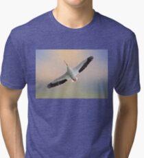 Soaring High Tri-blend T-Shirt