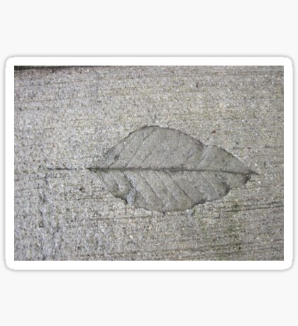 Sidewalk Art by Leaf Sticker