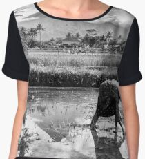 Rice Fields in Jogja  Chiffon Top