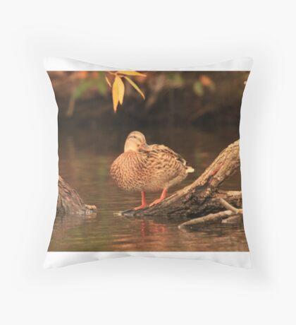 Lake Okauchee Mallard Throw Pillow