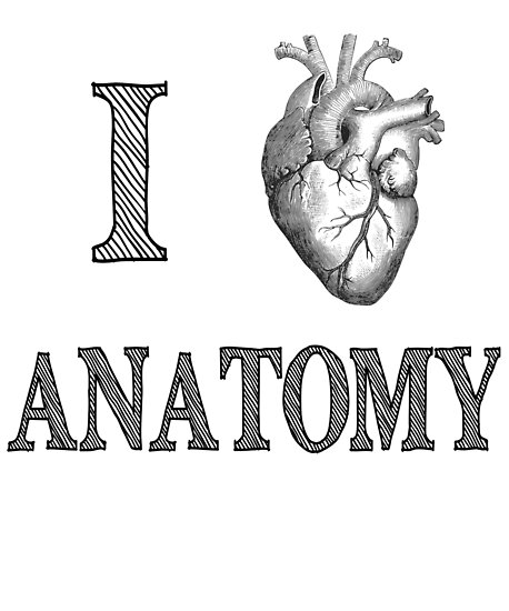 I Love Anatomy with Medical Anatomical Heart\