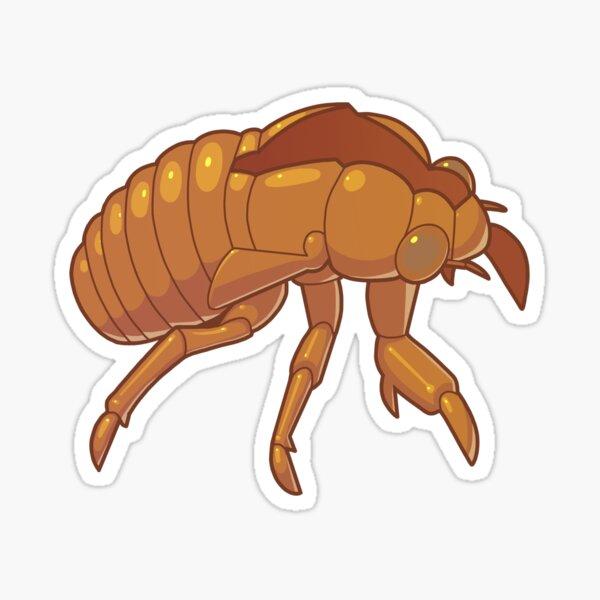Cicada Shell Sticker