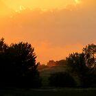 Orange Marmalade. Caldwell, Idaho by Diane Arndt
