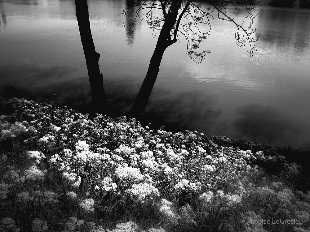 { by the river } by Louise LeGresley
