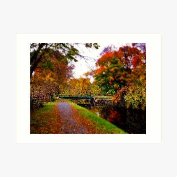 Canal Dream Art Print