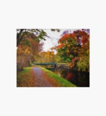 Canal Dream Art Board Print