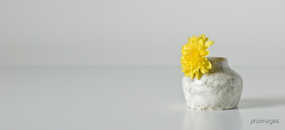 Vase With Yellow Flower by prbimages