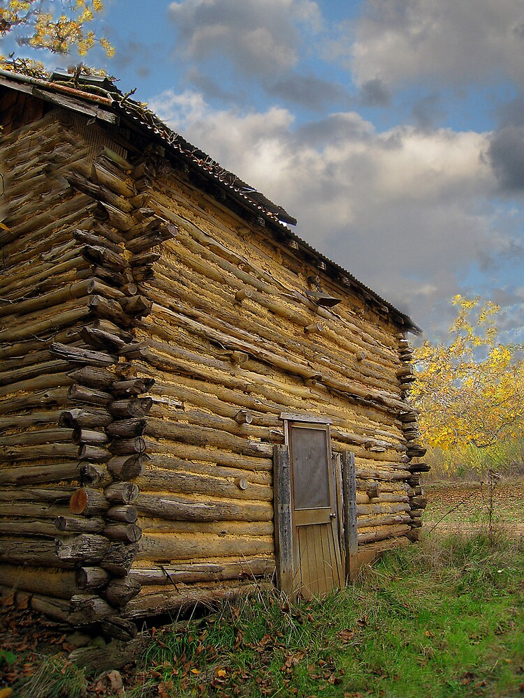 The Old Shed at the Walnut Farm by Marcia Luly