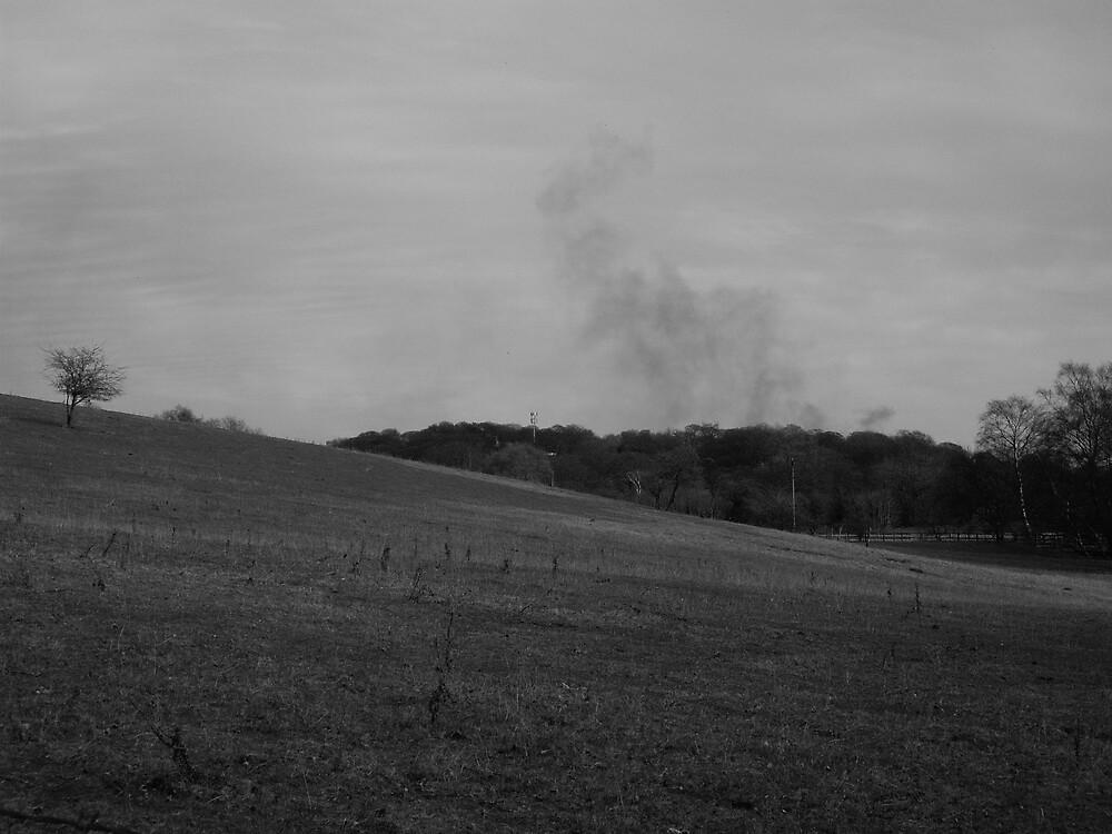 Smoke by FrancescaLily