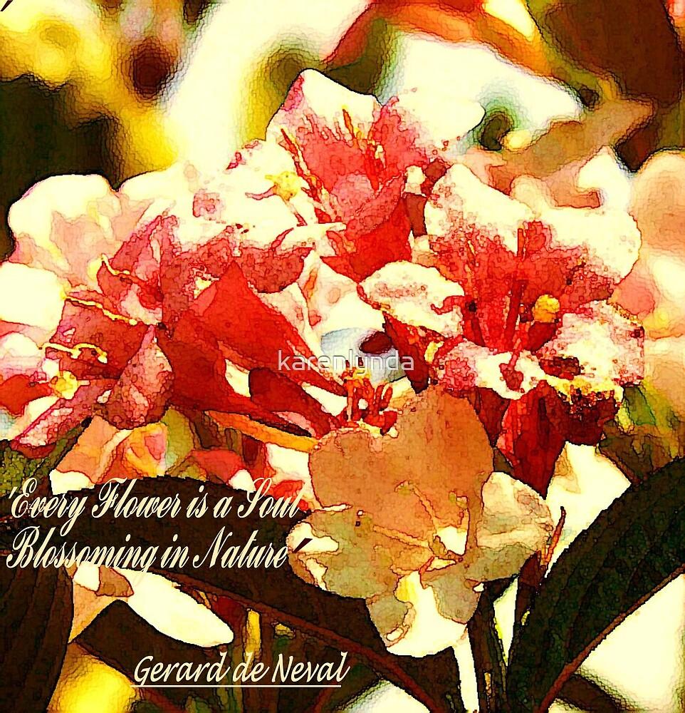 Summer Blossom by karenlynda