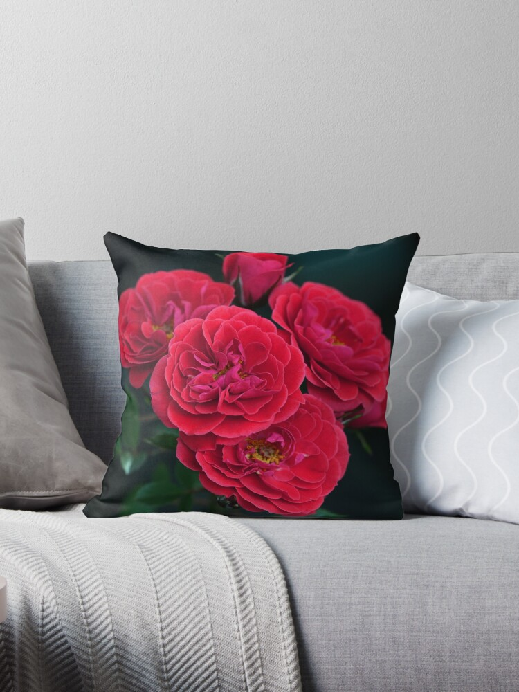 Roses Are by cdwork