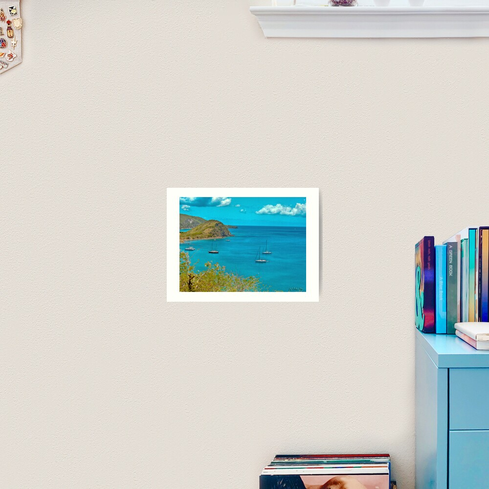 White House Bay Art Print