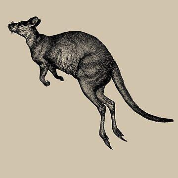 Vintage Australian Kangaroo by TheNewAntique