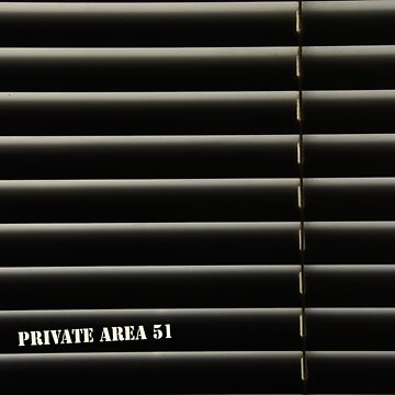 Private area 51 by Dvornik