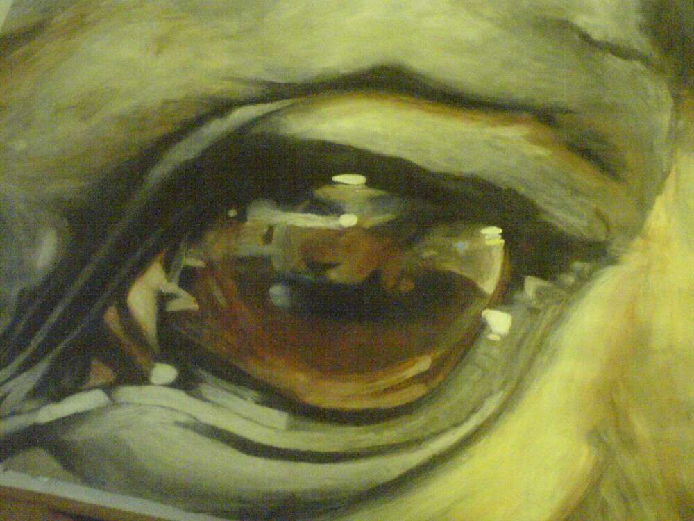 Maddy's Eye by mishell