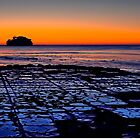 Sunrise at the Tessellated Pavements - Eaglehawk Neck, Tasmania by TonyCrehan