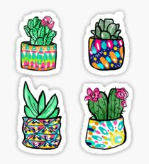 Colorful Cactus and Succulent Illustration Sticker