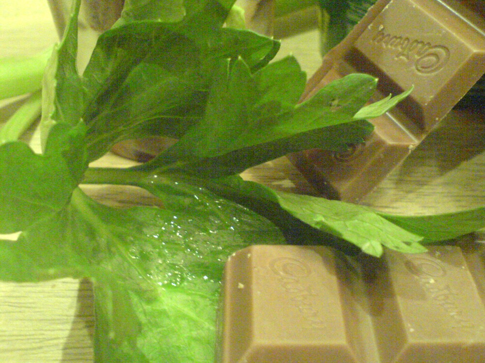 Celery and Chocolate by mishell