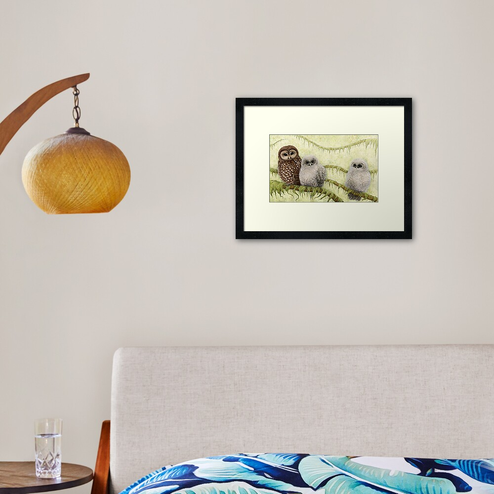 Northern Spotted Owls (Strix occidentalis caurina) Framed Art Print